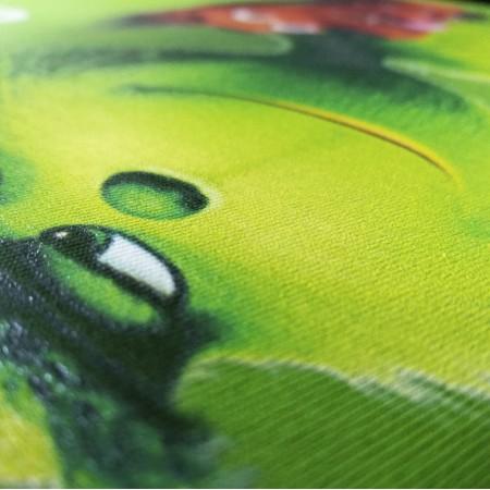 Директен печат върху цветен текстил
